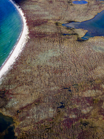 An aerial photo of the land adjacent to the Kazan River with small ponds and overlapping caribou trails that are part of the Fall Caribou Crossing National Historic Site.