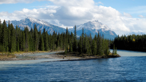 Athabasca LAND river mountains trees scenic