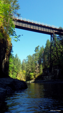 A wooden bridge, part of the 66 Mile Trestle, above the Cowichan River.
